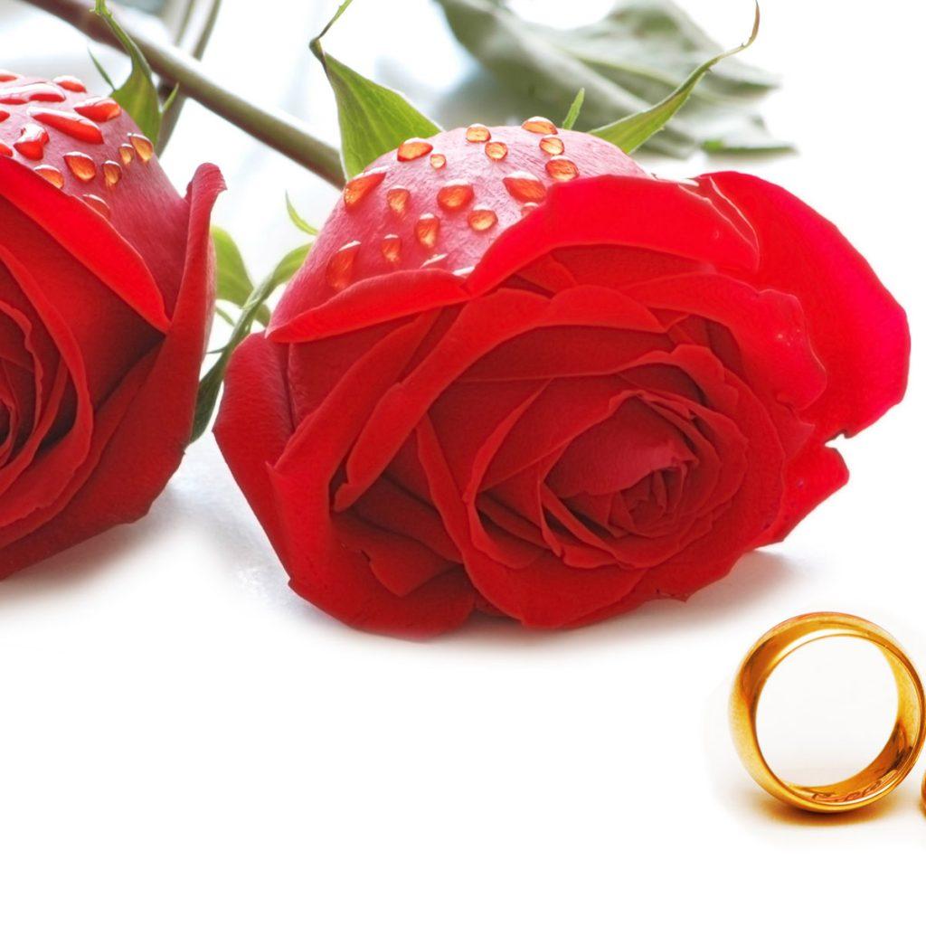 如何婚姻幸福,生活得這麼理想,幸福的八大婚姻公式。